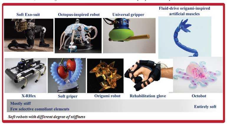 Soft robotics: Future of robotics ?   Daily FT