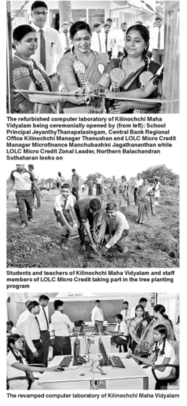 bbw needs company now in kilinochchi
