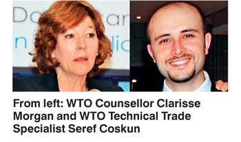 counsellor to the wto