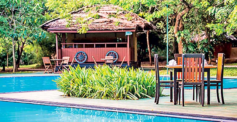 Elephant Reach Hotel Offers Host Of Benefits On 10th