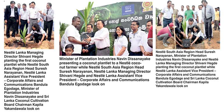 Nestlé Lanka gives boost to coconut industry | Daily FT