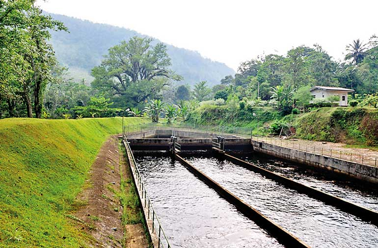 Magal-Ganga-Mini-Hydropower-Plant,-Kegalla-District